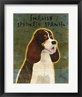 Framed English Springer Spaniel (tri-color)