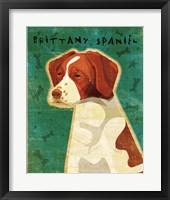 Framed Brittany Spaniel