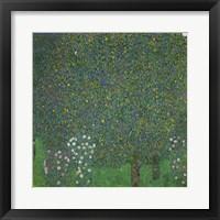 Framed Roses Under The Trees, 1918
