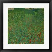 Framed Field Of Poppies, 1907