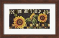Framed Sunflowers