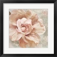 Petals Impasto I Framed Print