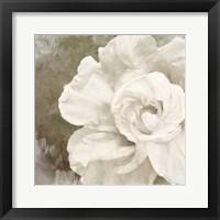 Framed Petals Impasto II