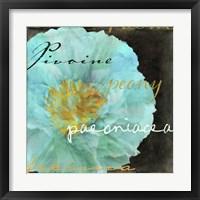 Blue Peony Dark Framed Print