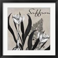 Flowering Herbs I Framed Print