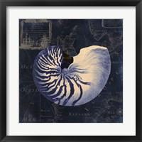 Maritime Blues V Framed Print