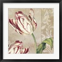 Peppermint Tulips I Framed Print
