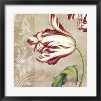 Peppermint Tulips II Framed Print