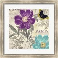 Framed Petals of Paris II