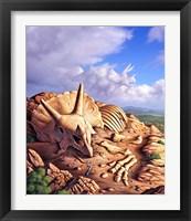 Framed Bones of a Triceratops
