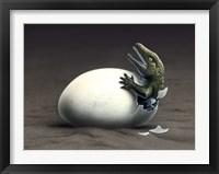 Framed Seymouria Hatching