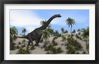 Framed Large Brachiosaurus in a Tropical Environment