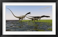 Framed Group of Coelophysis Dinosaurs