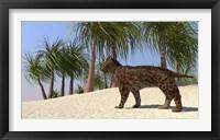 Framed Saber-Tooth Tiger