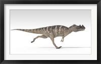 Framed Ceratosaurus Dinosaur