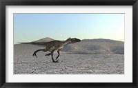 Utahraptor Framed Print