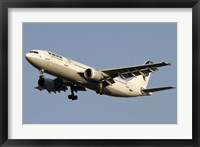 Framed Airbus A310 of Iran Air