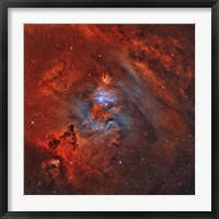 Framed Christmas Tree Nebula