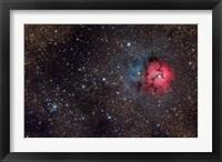 Framed Trifid Nebula