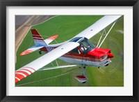 Framed Champion Aircraft Citabria