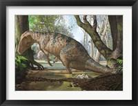 Framed Edmarka Rex