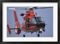 Framed Coast Guard MH-65 Dolphin