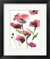 Framed Razzleberry Blossoms