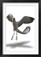 Framed Archaeopteryx