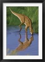 Framed Hypsilophodon