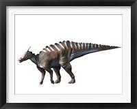 Framed Saurolophus Dinosaur