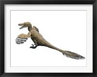 Framed Velociraptor Mongoliensis