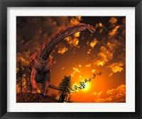 Framed Argentinosaurus