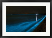 Framed Bioluminescence in Waves in the Gippsland Lakes