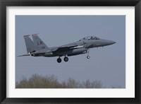 Framed US Air Force F-15E Strike Eagle