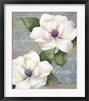 Southern Charms Framed Print