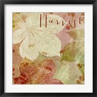 October Pastel II Framed Print