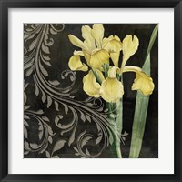 Ode to Yellow II Framed Print