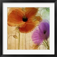 Penchant For Poppies II Framed Print