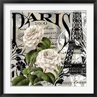Framed Paris Blanc II