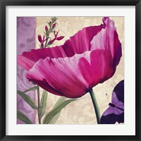Pink Poppy I Framed Print