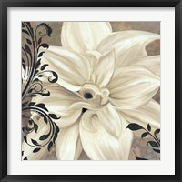 Winter White II Framed Print