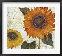 Framed Sundresses II