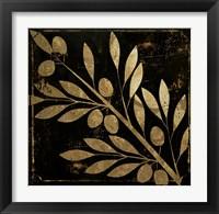 Framed Bellissima I
