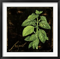 Framed Black Gold Herbs IV