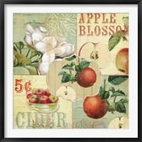 Apple Blossoms I Framed Print