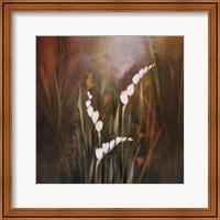 Framed Flora Luminous II