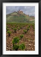 Framed Vineyard in stony soil with San Vicente de la Sonsierra Village, La Rioja, Spain