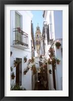 Framed Calleja de las Flores (Flower Alley), Spain