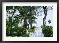 Framed Park in Cadiz, Spain, Europe