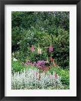 Framed Nash Garden, St James Park, London, England